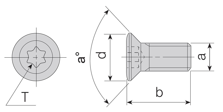 Typy oraz wymiary śrub Torx firmy Akko
